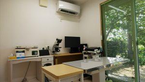 こうたアニマルクリニック診察室