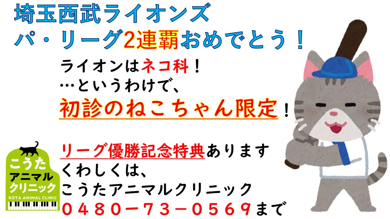 埼玉西武ライオンズ優勝特典